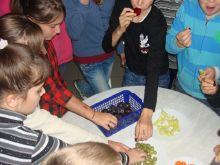Gyümölcsprogram 2013. 10. 18.